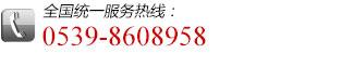 全国统一服务热线:0539-8608958